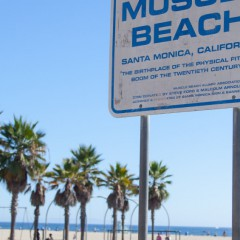 Muscle Beach Venice : Beach Next to the Santa Monica Pier Put LA's Beautiful People on the Map