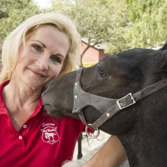 A Loving Oasis for Abused Horses