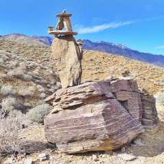 Take a Hike: The Palm Canyon Trail