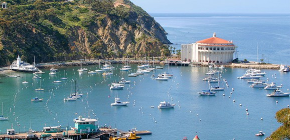 Catalina Offers Birthday Freebies