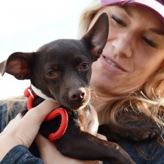 Shelter Pets Get a Second Chance