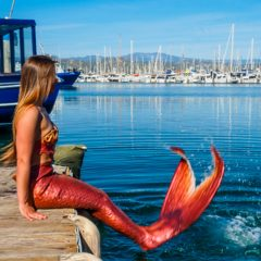 Mermaid Happenings at Ventura Harbor