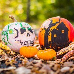 24th Annual Pumpkin Festival