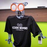 Code Ninjas Coming To Thousand Oaks